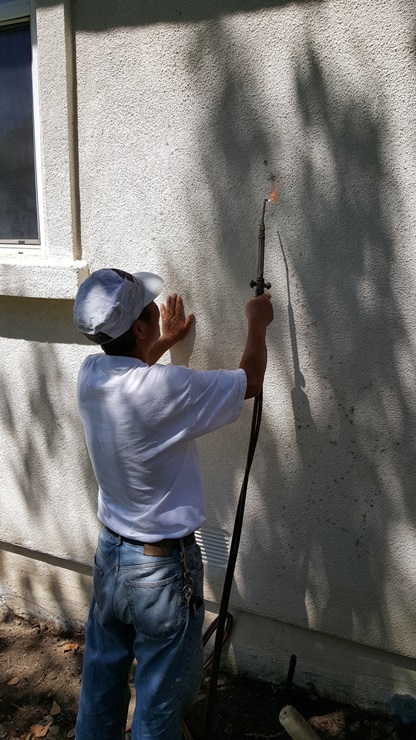 Young's Painting Company Major Jobs
